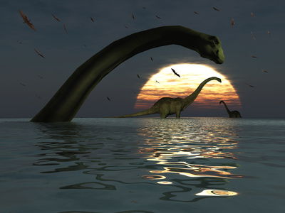 Diplodocus Dinosaurs Bathe in a Large Body of Water Photographie