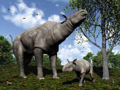 A Paraceratherium Mother Grazes on Leaves and Twigs of a Poplar Tree Photographic Print by  Stocktrek Images