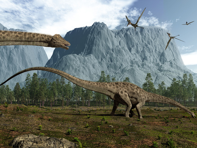 Diplodocus Dinosaurs Graze While Pterodactyls Fly Overhead Photographic Print by  Stocktrek Images