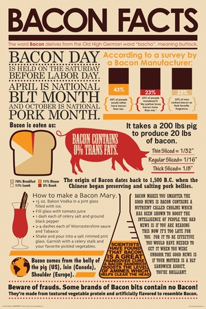 Bacon Facts Posters