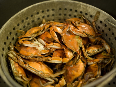 Maryland Style Steamed Crabs