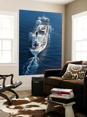 The Military Sealift Command Hospital Ship Usns Comfort Wall Mural by  Stocktrek Images