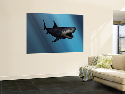A Megalodon Shark from the Cenozoic Era Reproduction murale gante