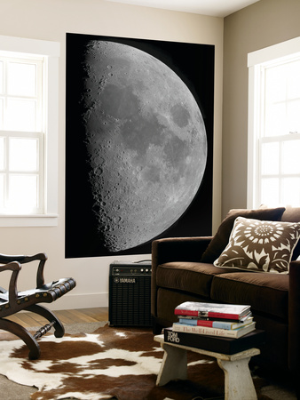 Half-Moon Wall Mural by  Stocktrek Images