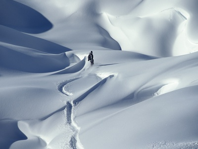 Snowboarder Riding in Powder Snow, Austria, Europe Fotoprint av Ted Levine