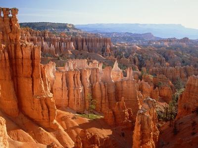 USA, Utah, Bryce Canyon Photographic Print by Rainer Hackenberg