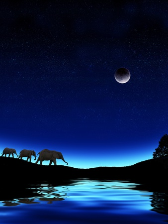 Three Elephants Walking Past Water Photographic Print by Mike Agliolo