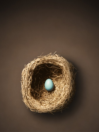 Single Egg in Nest Photographic Print by John Gillmoure