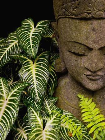 Statue in a Garden Location Information: Chiang Mai, Thailand Fotoprint av Bruno Ehrs
