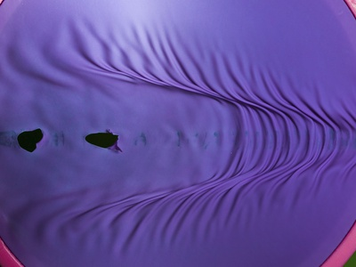 Rubber Wave Photographic Print by Alan Sailer