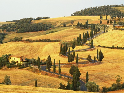 Italian Countryside of Val d'Orcia Fotoprint av Sergio Pitamitz
