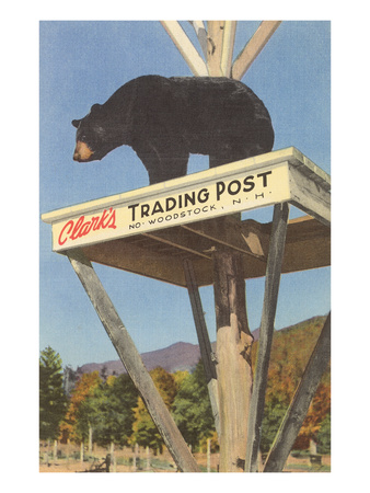 Bear, Clark's Trading Post, Woodstock, New Hampshire Poster