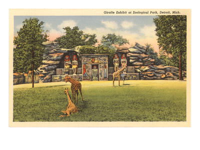 Giraffes in Zoo, Detroit, Michigan Prints