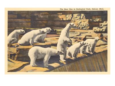 Polar Bears in Zoo, Detroit, Michigan Posters