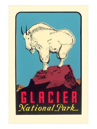 Rocky Mountain Goat, Glacier National Park, Montana Affischer