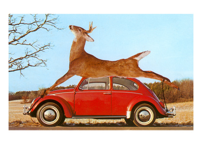 Giant Deer Tied on Volkswagen Posters