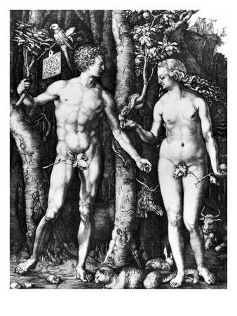 DRer: Adam & Eve, 1504 Premium Giclee Print by Albrecht Dürer