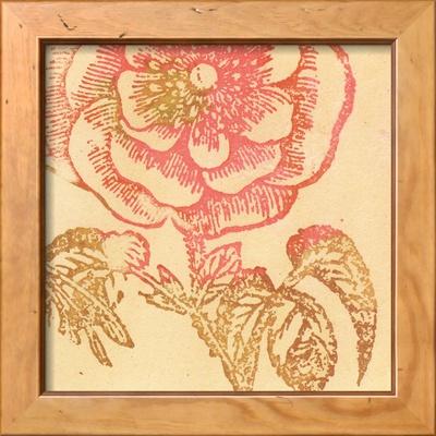 Coral Rose Indrammet kunsttryk
