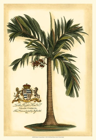 British Colonial Palm I Prints