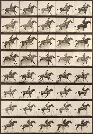 Jumping a Hurdle Posters by Eadweard Muybridge