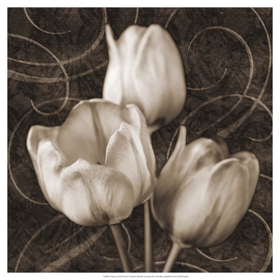 Tulip and Swirls II Art Print