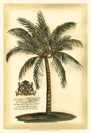 British Colonial Palm III Plakat