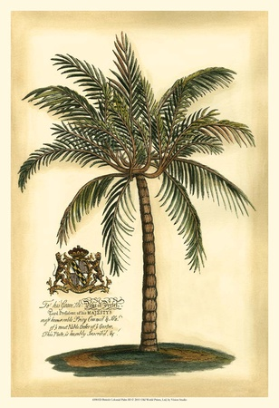 British Colonial Palm III Prints