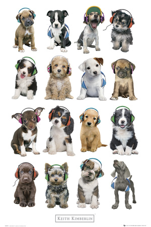 Kimberlin-Puppies Head Phones Affiche