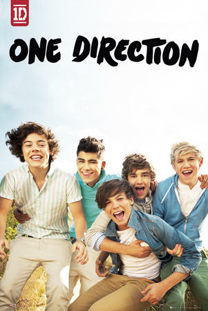 One Direction-Album Plakat