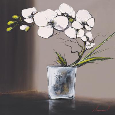 Swirls of White Orchids II Affischer av Olivier Tramoni