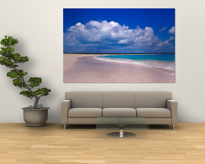 Pink Sand Beach, Harbour Island, Bahamas Plakater af Greg Johnston
