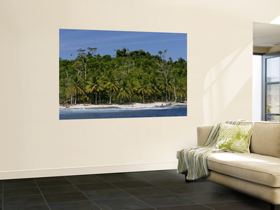 Heavily Palm-Tree Forested Mentawai Islands, Indonesia Arte laminado de gran formato