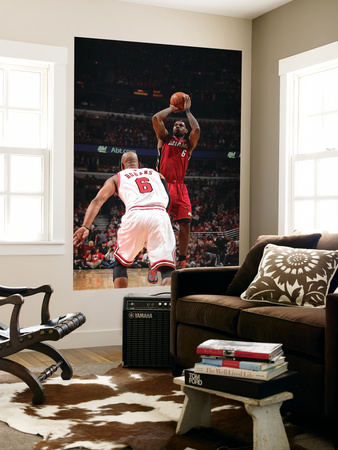 Miami Heat v Chicago Bulls - Game Five, Chicago, IL - MAY 26: LeBron James and Keith Bogans Prints by Nathaniel S. Butler