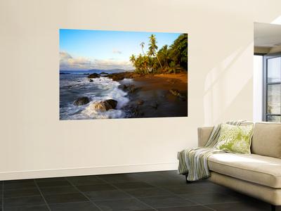 Beach on Pacific Ocean on West Coast of Costa Rica Print by Johnny Haglund