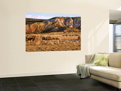 Chama River Canyon Wilderness Area, New Mexico, USA Laminated Oversized Art