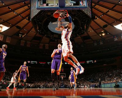 New York Knicks v Los Angeles Lakers, New York, NY, Feb 10: Tyson Chandler, Josh McRoberts Photo by Nathaniel S. Butler