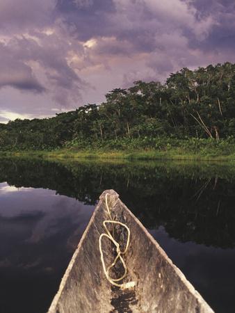 Napo Wildlife Center, Yasuni National Park, Amazon Basin, Ecuador Fotografie-Druck von Christopher Bettencourt