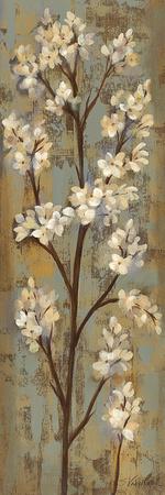 Almond Branch I Plakater af Silvia Vassileva