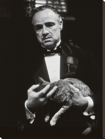 The Godfather-Cat B&W Stretched Canvas Print