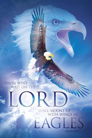 Eagle's Wings Prints