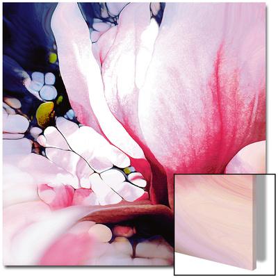 Magnolie Prints by  Schmidt