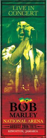 Bob Marley Concert Kingston Jamaica Music Door Poster Posters