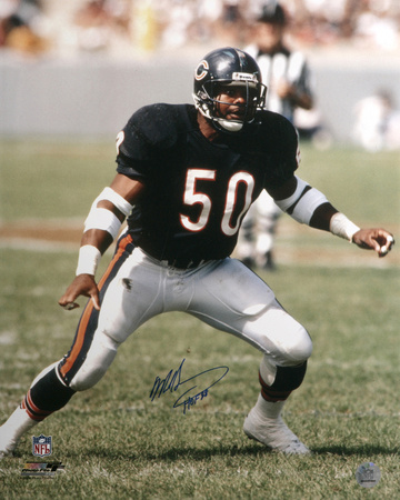 "Mike Singletary Signed Bears Jersey Inscribed ""HOF 98"" (Schwartz COA ..."