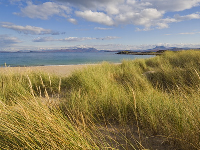 Sand Dunes and Dune Grasses of Mellon Udrigle Beach, Wester Ross, North West Scotland Photographic Print by Neale Clarke