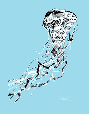 Jellyfish Serigraph