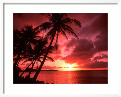 Palms And Sunset at Tumon Bay, Guam Framed Photographic Print
