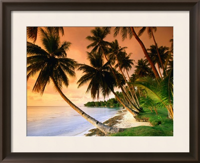 Blue Lagoon Resort Beach, Weno Centre, Micronesia Framed Photographic Print by John Elk III