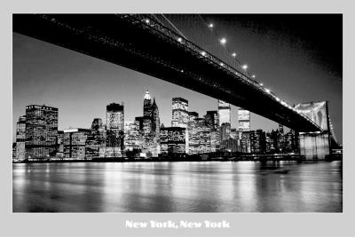 New York, New York (Night Skyline) Photo Print Poster Prints