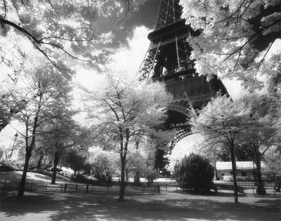Afternoon in Paris (Eiffel Tower, Park) Prints