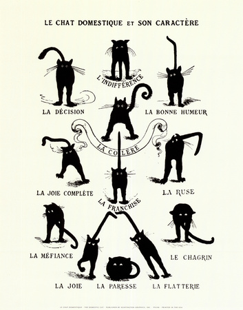 French Caractere (Le Chat Domestique) Poster